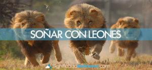 Soñar con leones